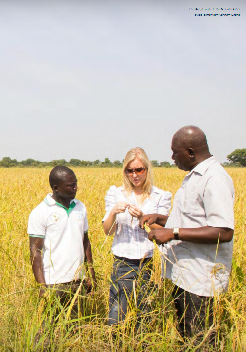 A photo of a woman and two men standing in a field of wheat.